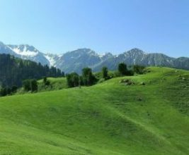 Photo of Gilgit Baltistan is turning into Chinese colony, reveals 'Taya Ki Baithak'
